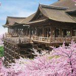 【祇園店おすすめ】八坂神社~清水寺観光ルート