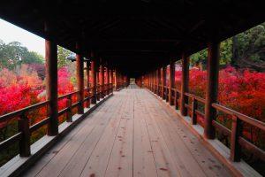 京都 東福寺 通天橋